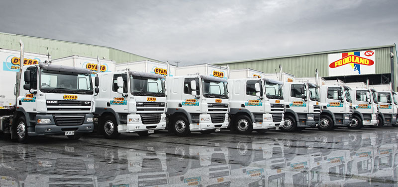 DyersDistribution-trucks in a row